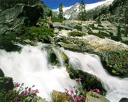 Photograph of Canyon Creek by the outlet of Canyon Lake in the Trinity Alps Wilderness. Photograph by George Wuerthner.